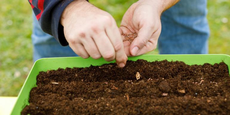 Mise en place de la jardinière