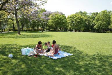 Pique-nique au Parc de la roseraie du Val-de-Marne