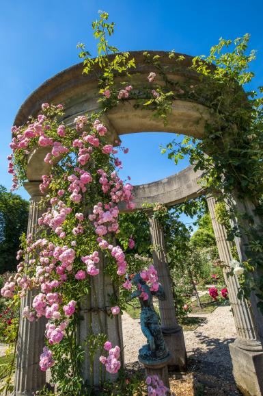 La Roseraie du Val-de-Marne conservatoire de roses anciennes