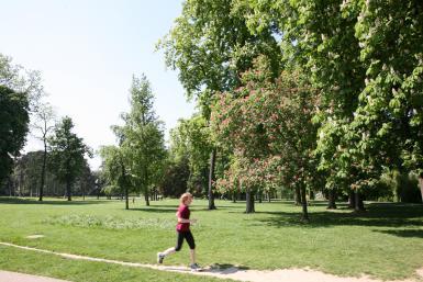 Course à pieds au oarc de la roseraie du Val-de-Marne